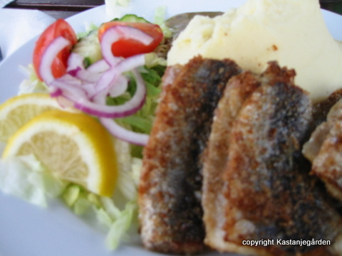 varma smörgåsar med svampstuvning